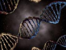 Cyfrowej ilustracja DNA model Fotografia Stock