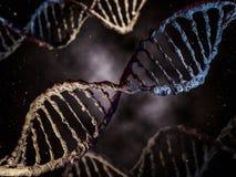 Cyfrowej ilustracja DNA model 3d Obrazy Royalty Free
