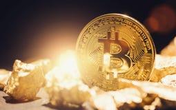 Cyfrowy Złocisty Tulipanowy Bitcoin - bitcon bąbla pojęcia wizerunek obrazy royalty free