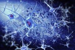 Cyfrowych ilustracyjni neurony Zdjęcie Royalty Free