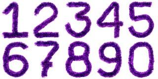 cyfry fiołkowe Obraz Royalty Free