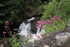 Cyfyng Falls Stock Image
