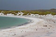 Cygańska zatoczka, Wschodni Falkland, Falkland wyspy zdjęcia stock