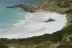Cygańska zatoczka Obrazy Royalty Free