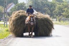 Cygan w Rumunia robi odtransportowania sianu koniem i frachtem zdjęcia stock