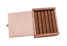 Cygara w drewna pudełku brązowić na białym tle Fotografia Royalty Free