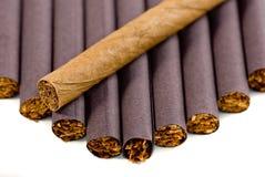 cygarowy papierosa Fotografia Royalty Free