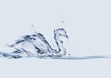 Cygne de l'eau Image libre de droits