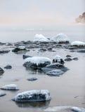 Cygnes de coucher du soleil Photos libres de droits