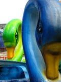 Cygnes de parc à thème Photo libre de droits