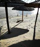 Cygnes de plage de ville Photos stock