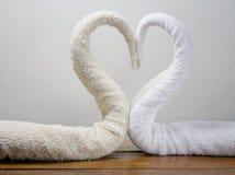 Cygnes de serviettes Image stock