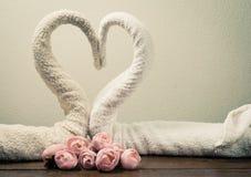 Cygnes de serviettes Images libres de droits