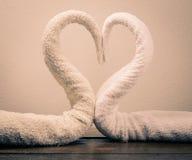 Cygnes de serviettes Photo libre de droits