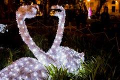 Cygnes des lumières dans Salerno Images stock