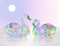 Cygnes en pastel et multicolores sur le lac Photographie stock libre de droits