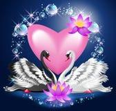 Cygnes et coeur noirs et blancs Photos libres de droits