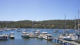 Free Cygnet, South Tasmania Royalty Free Stock Photography - 42429997