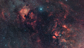 Cygnus Constellation's nebularity. Royalty Free Stock Image