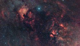 Cygnus Constellation's nebularity. royalty free stock image
