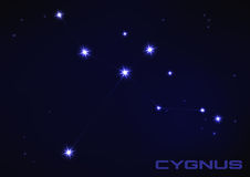 Cygnus constellation Stock Photography