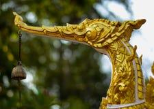 Cygnus gouden Thai Stock Foto's