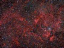Cygnus Widefleld stockbild