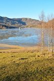 Cyjanek jezioro przy Geamana Rumunia Obrazy Royalty Free