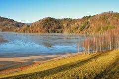 Cyjanek jezioro przy Geamana Rumunia Zdjęcia Royalty Free