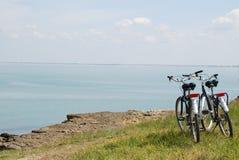 cykel Royaltyfri Fotografi
