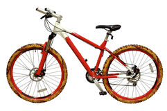 cykel Arkivfoton
