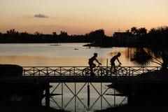 Cykel Royaltyfri Foto