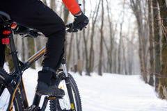 Cykel för bergcyklistridning på den snöig slingan i den härliga vintern Forest Free Space för text Royaltyfria Foton
