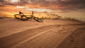 Cykel i öknen arkivbild