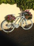 Cykel i blom Arkivbild