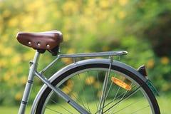 Cykel i parken Royaltyfria Bilder