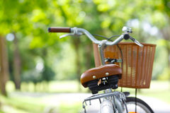 Cykel i parken Royaltyfri Foto