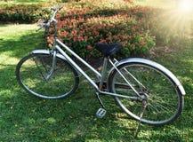 Cykel i parkera med blommablom Royaltyfri Fotografi