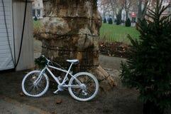 Cykel i vit arkivbilder