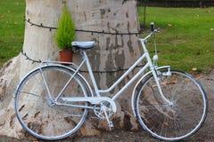 cykel lutad treewhite Arkivfoton