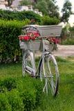 Cykel med blommor Arkivbilder