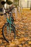 Cykel med fallleaves Fotografering för Bildbyråer