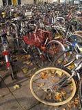 cykel mycket Arkivfoto