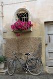 Cykel och blommor Royaltyfri Fotografi