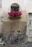 Cykel och blommor Arkivbilder
