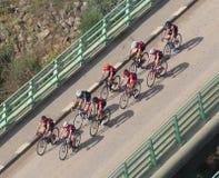 Cykel på en bro royaltyfri bild