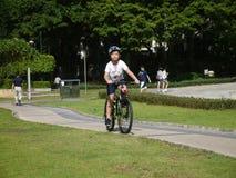 Cykel på sjön på soluppgång Royaltyfria Bilder
