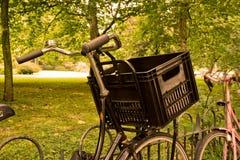 Cykel på Vondelpark Amsterdam Holland Royaltyfri Bild