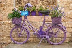 Cykel som färgas fullständigt i lilor royaltyfri bild