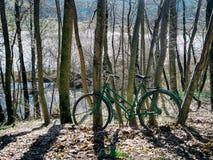 Cykel som fångas i skog Royaltyfri Bild